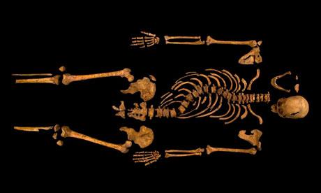 King Richard III's skeleton (guardian.co.uk)